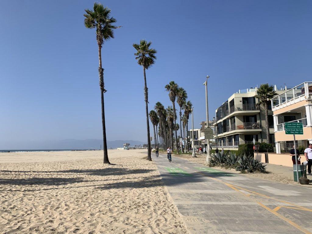 Pista ciclabile al lato della spiaggia di Venice Beach, costeggiata da palme