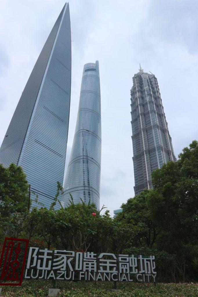 """Tre grattacieli di Shanghai visti dal basso di alcuni cespugli, con alla base la scritta """"Lujiazui Financial City"""""""